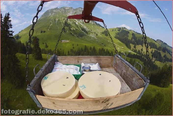 Schweizer Käsehersteller herstellen (7)