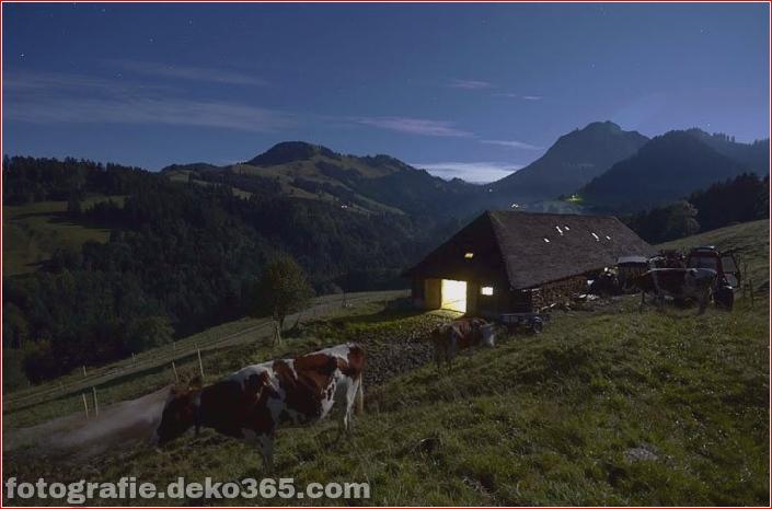 Schweizer Käsehersteller herstellen (19)