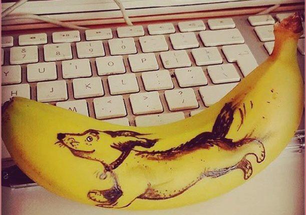 Spaß mit Obst: Superb Bananas Artwork_5c9016a6422ad.jpg