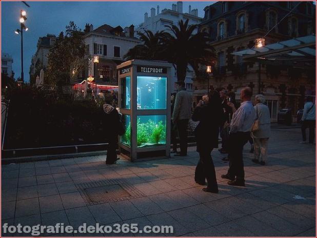 In Outdoor-Fischaquarien umgewandelte Telefonzellen (4)