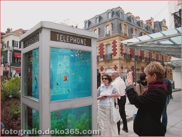 In Outdoor-Fischaquarien umgewandelte Telefonzellen (5)