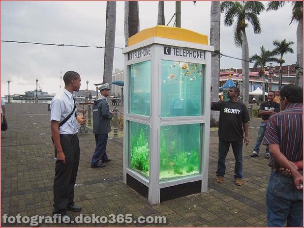 In Outdoor-Fischaquarien umgewandelte Telefonzellen (6)
