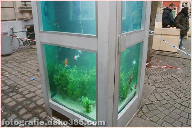 In Outdoor-Fischaquarien umgewandelte Telefonzellen (7)