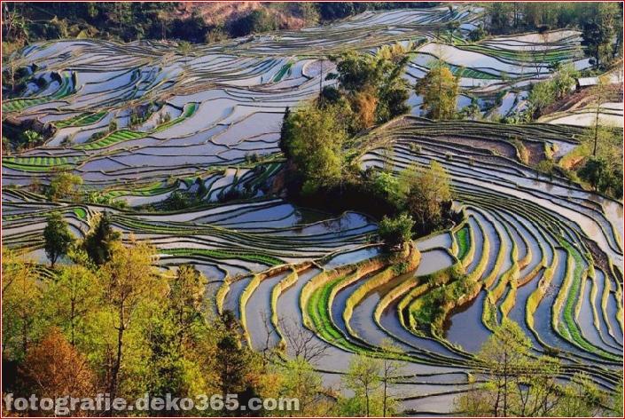 Die größten terrassierten Reisfelder der Welt, Yuen Yang, China (1)