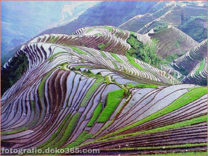 Die größten terrassierten Reisfelder der Welt, Yuen Yang, China (2)