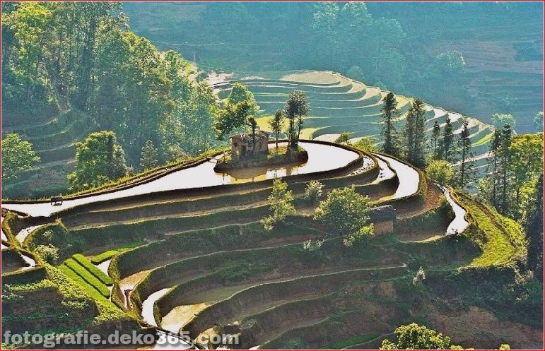 Die größten terrassierten Reisfelder der Welt, Yuen Yang, China (3)