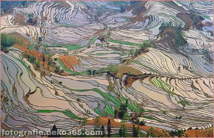 Die größten terrassierten Reisfelder der Welt, Yuen Yang, China (5)