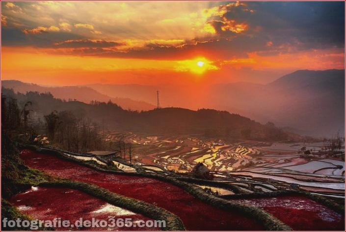 Die größten terrassierten Reisfelder der Welt, Yuen Yang, China (7)