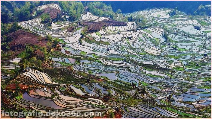 Die größten terrassierten Reisfelder der Welt, Yuen Yang, China (8)