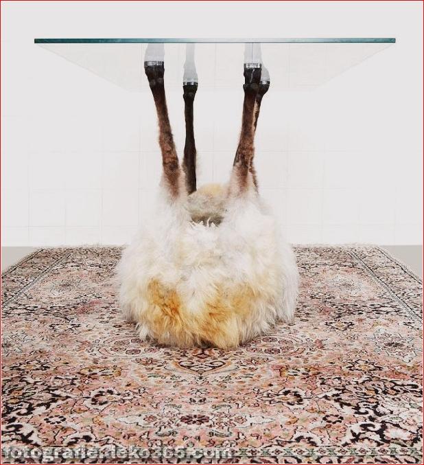 bizarre Möbelstücke, die wie Tiere aussehen (6)