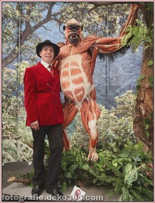 Tierkörperausstellung in Deutschland_5c905c4133ff2.jpg