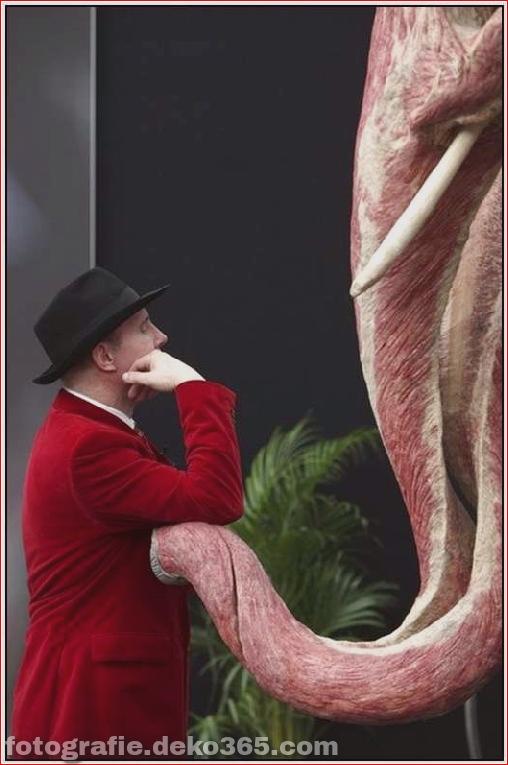 Tierkörperausstellung - Deutschland