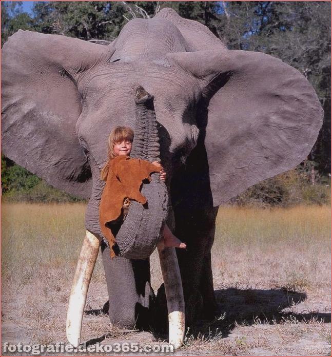 Tippi Degre, der echte Mowgli_5c905b15ee801.jpg