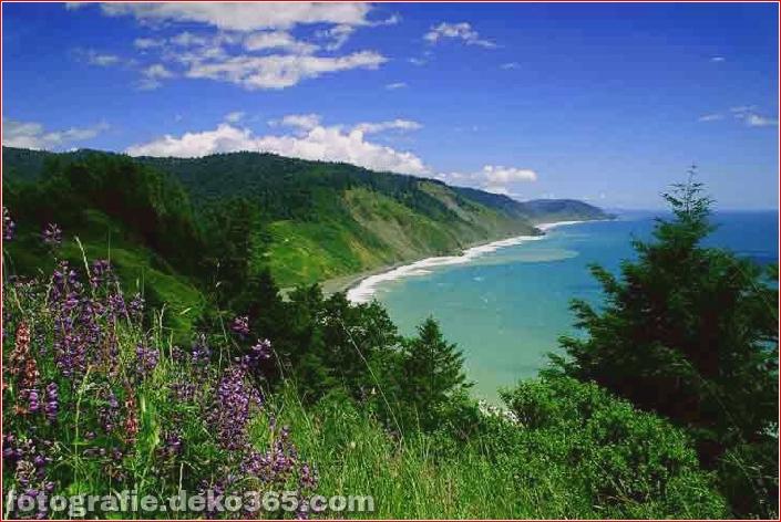 Top 10 Nationalparks in Kalifornien_5c904672ce53e.jpg