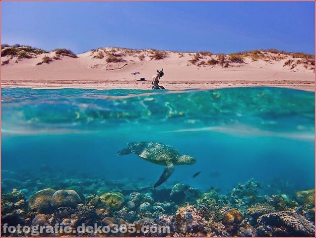 Top 10 Tourismus Australien Fotos von 2013_5c90455f50e8f.jpg