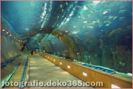 Tunnel und U-Bahnen_5c905acd5d97c.jpg