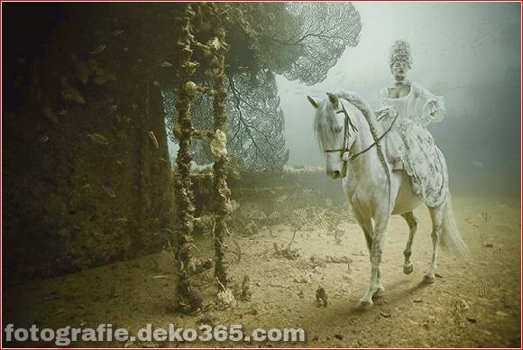 Unterwasserausstellung_5c905463e5b21.jpg