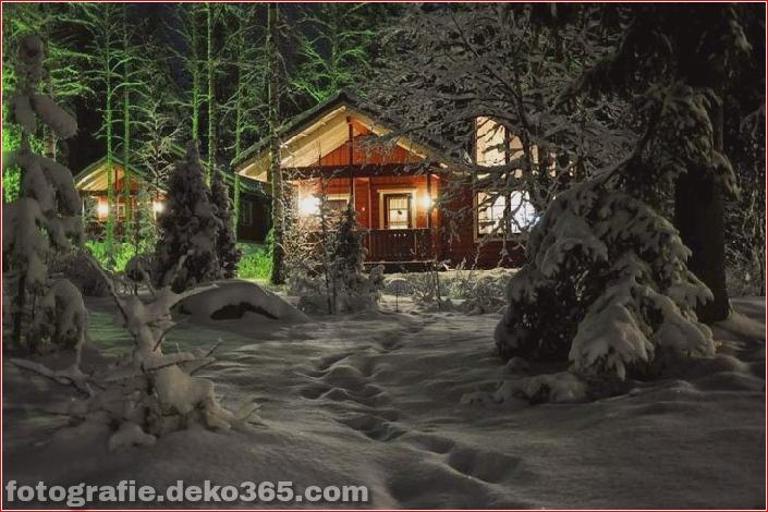 Sauberes Haus im Wald (1)