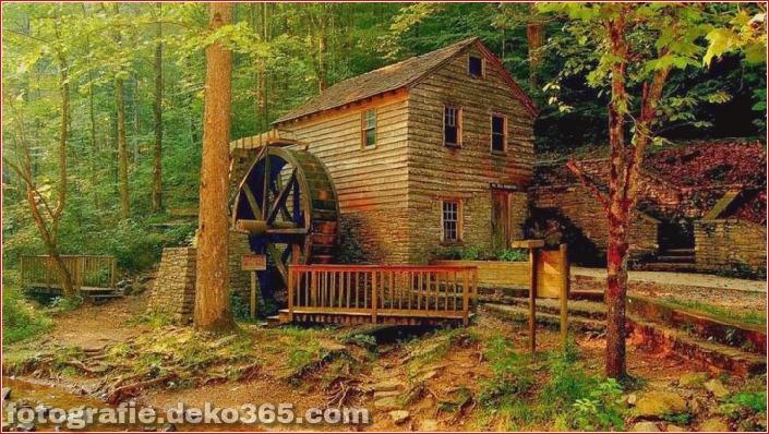 Sauberes Haus im Wald (8)