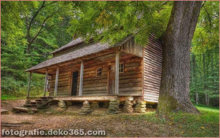 Sauberes Haus im Wald (9)