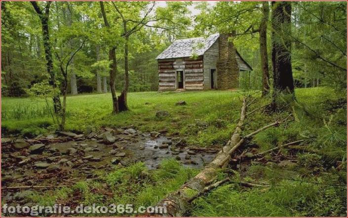 Sauberes Haus im Wald (10)
