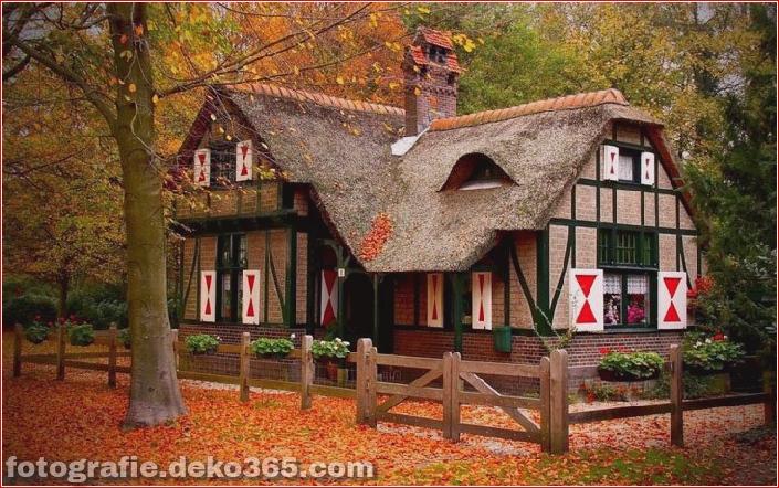 Sauberes Haus im Wald (13)