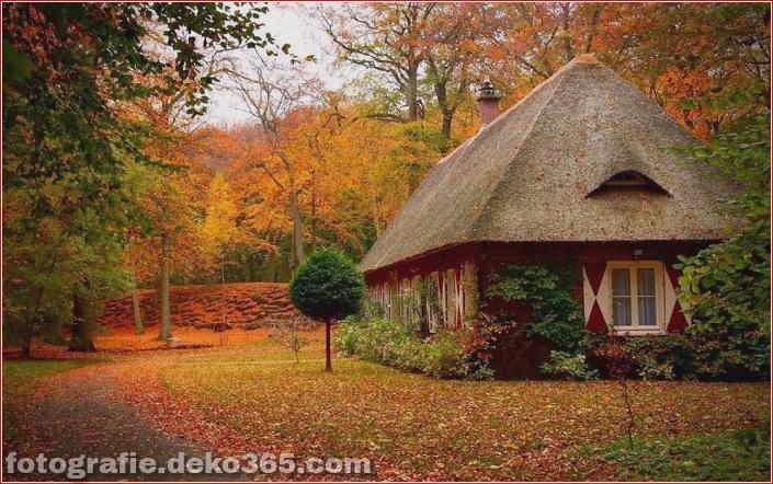 Sauberes Haus im Wald (17)