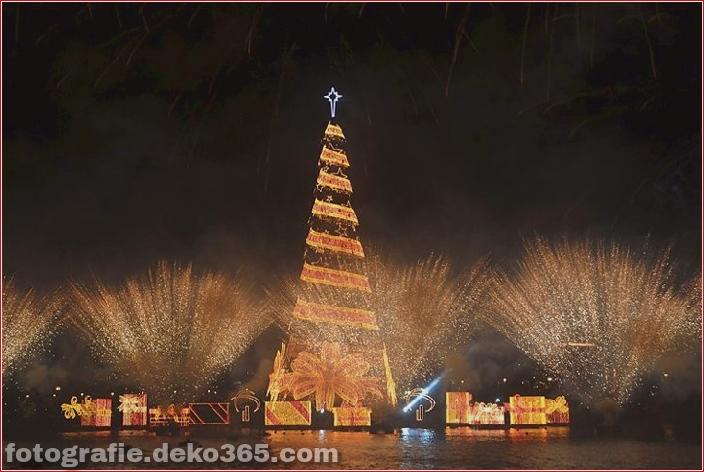 Weihnachtsbäume mit Lichtern Fotografie_5c9060f85bec4.jpg