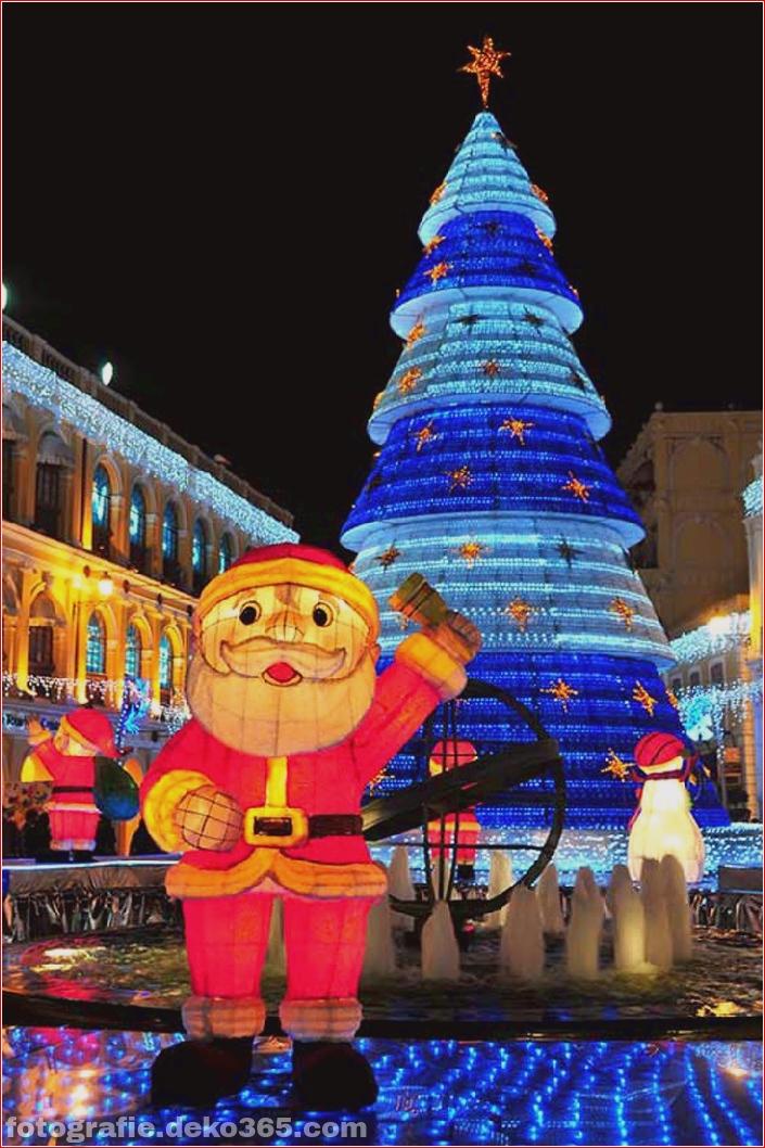 Weihnachtsbäume mit Lichtern Fotografie_5c9060fa6e6ba.jpg