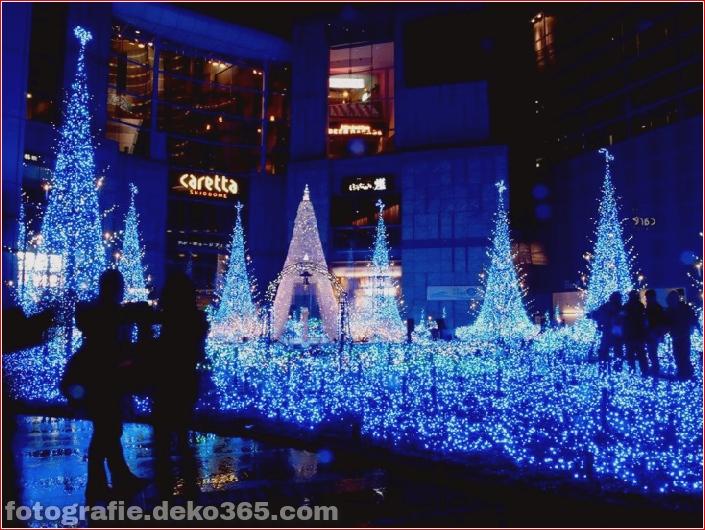 Weihnachtsbäume mit Lichtern Fotografie_5c9060fc29dbe.jpg