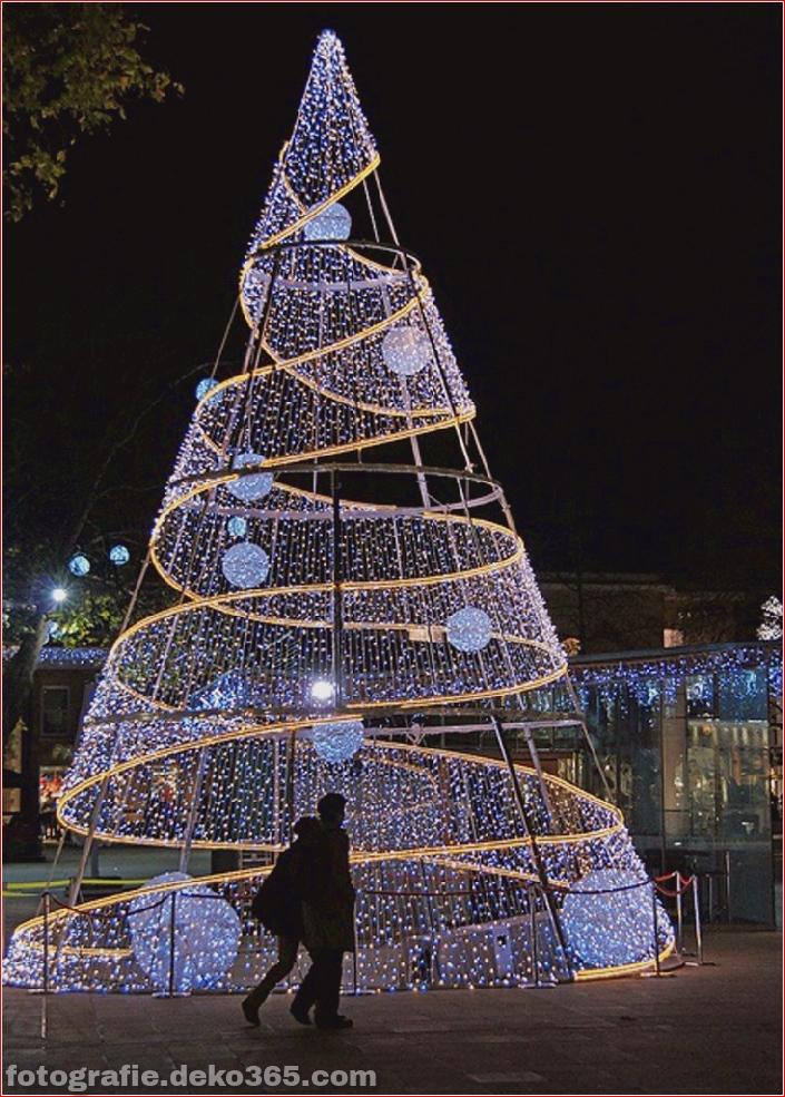 Weihnachtsbäume mit Lichtern Fotografie_5c9060fe72981.jpg