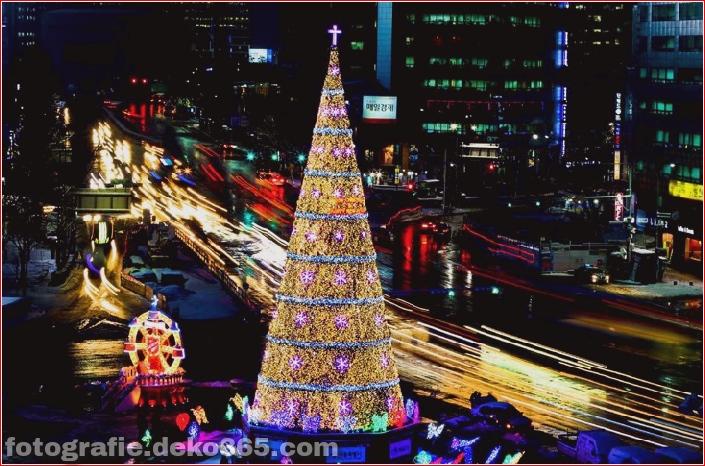 Weihnachtsbäume mit Lichtern Fotografie_5c90610032982.jpg