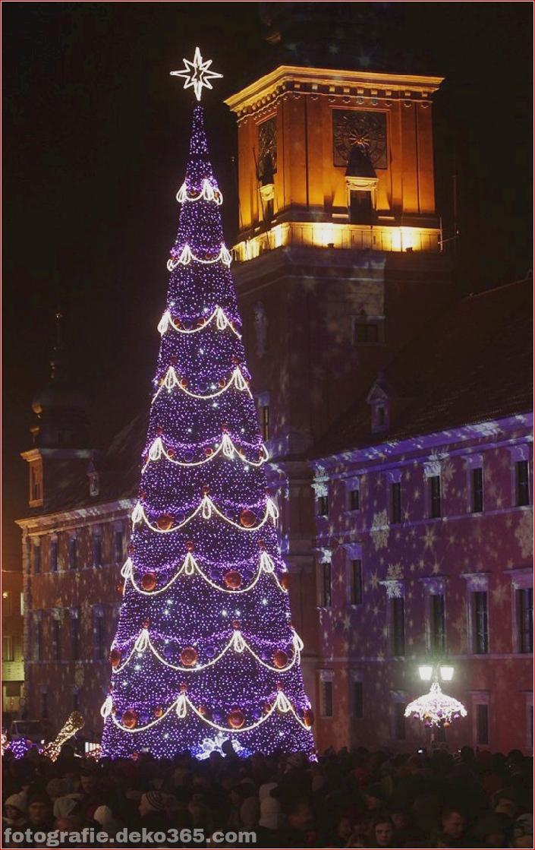 Weihnachtsbäume mit Lichtern Fotografie_5c906107aaa4b.jpg