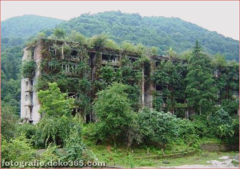Beispiel der Natur gewann die menschliche Architektur (5)