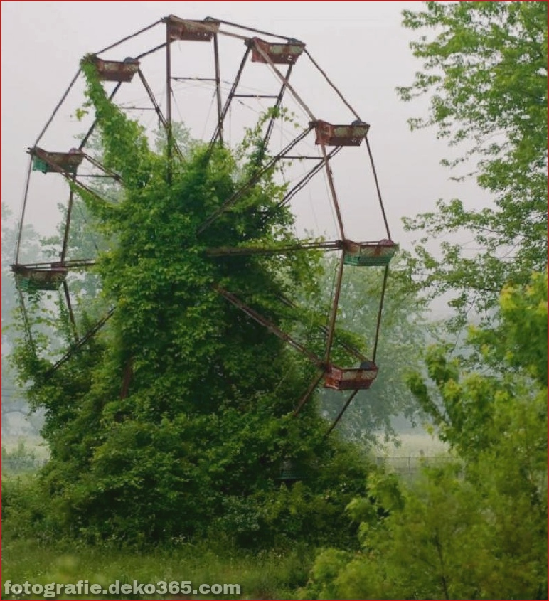 Beispiel der Natur gewann die menschliche Architektur (24)