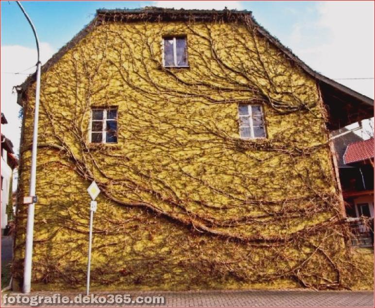 Beispiel der Natur gewann die menschliche Architektur (25)