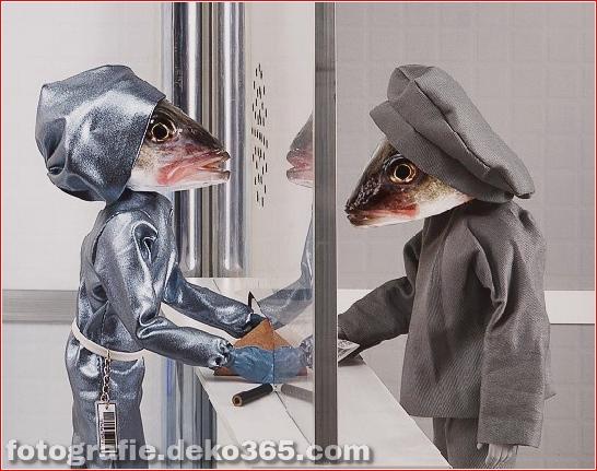 Echte Fischköpfe, die in Fotografien verwendet werden (1)