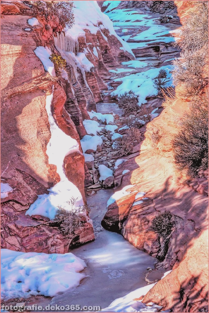 Zion National Park_5c904331dacda.jpg