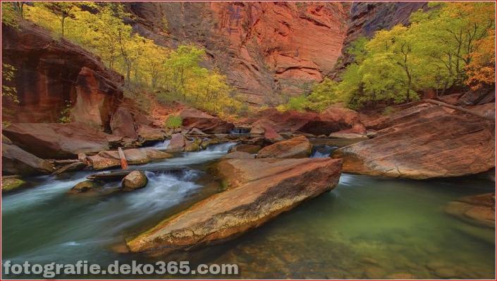 Zion National Park_5c9043452c2ba.jpg